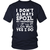 I Spoil my Grandkids Statement Shirt