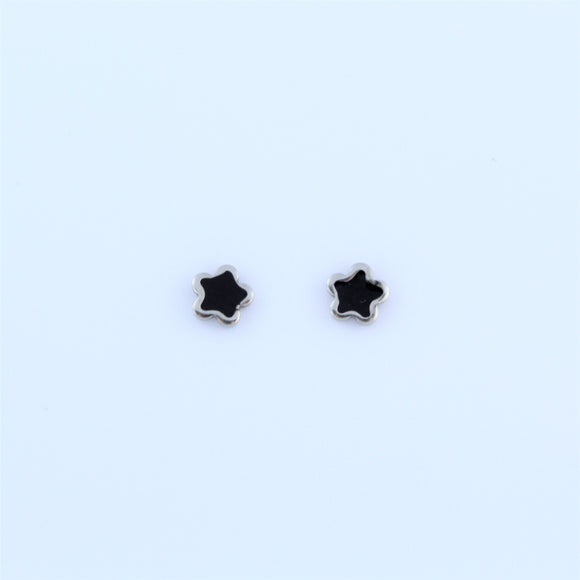 Stainless Steel Black Star Earrings
