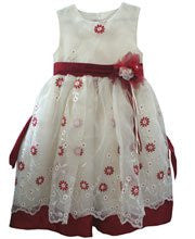Embroidered Organza Flower Girls Party Dress 4T--Carousel Wear