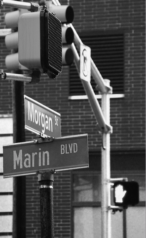 marin + morgan street sign
