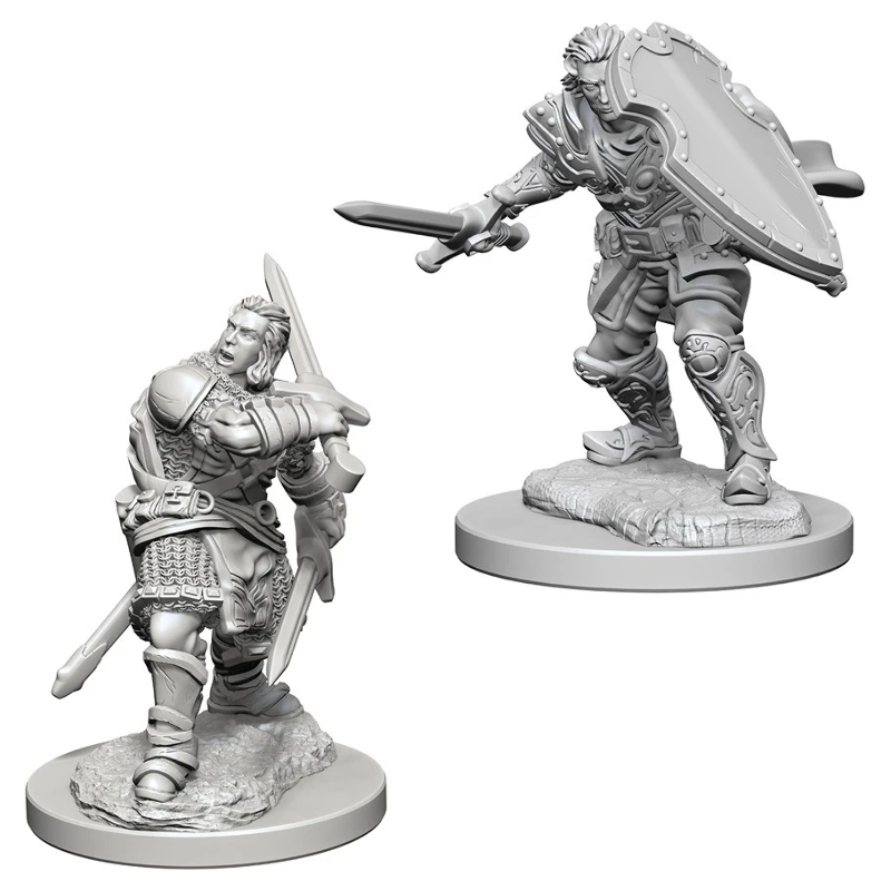 DND UNPAINTED MINIS WV3 MALE HUMAN PALADIN