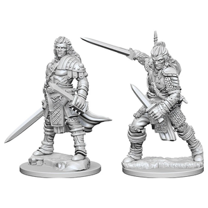 PF UNPAINTED MINIS WV1 MALE HUMAN FIGHTER