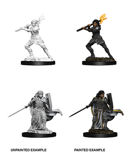 DND UNPAINTED MINIS WV10 FEMALE HUMAN PALADIN