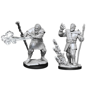 DND UNPAINTED MINIS WV11 MALE FIRBOLG DRUID