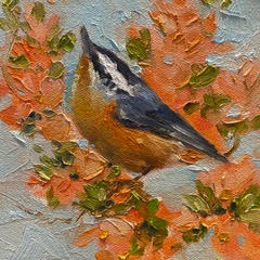 Things are Looking Up, Nuthatch