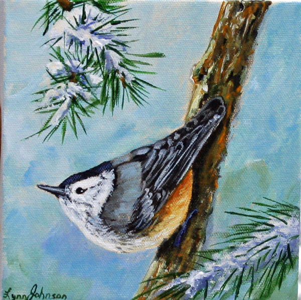 Snow Bird #22, Nuthatch