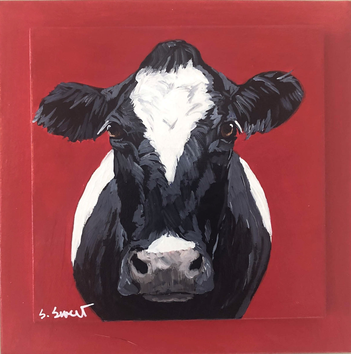 Holstein on red