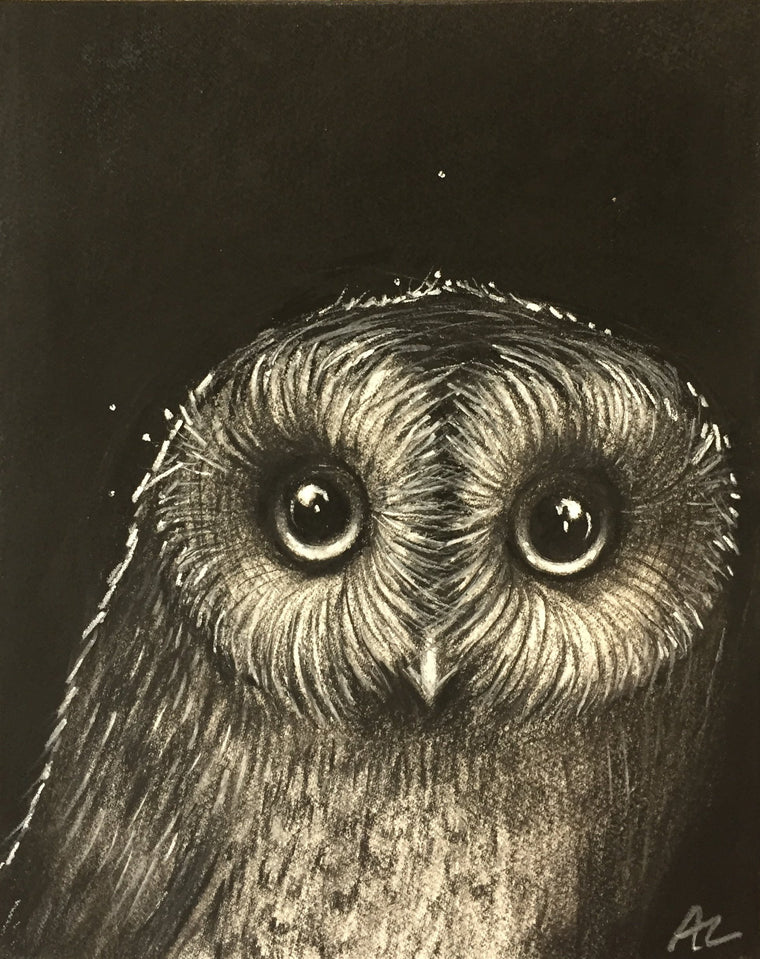 Owl # 1 - Abigail Lower