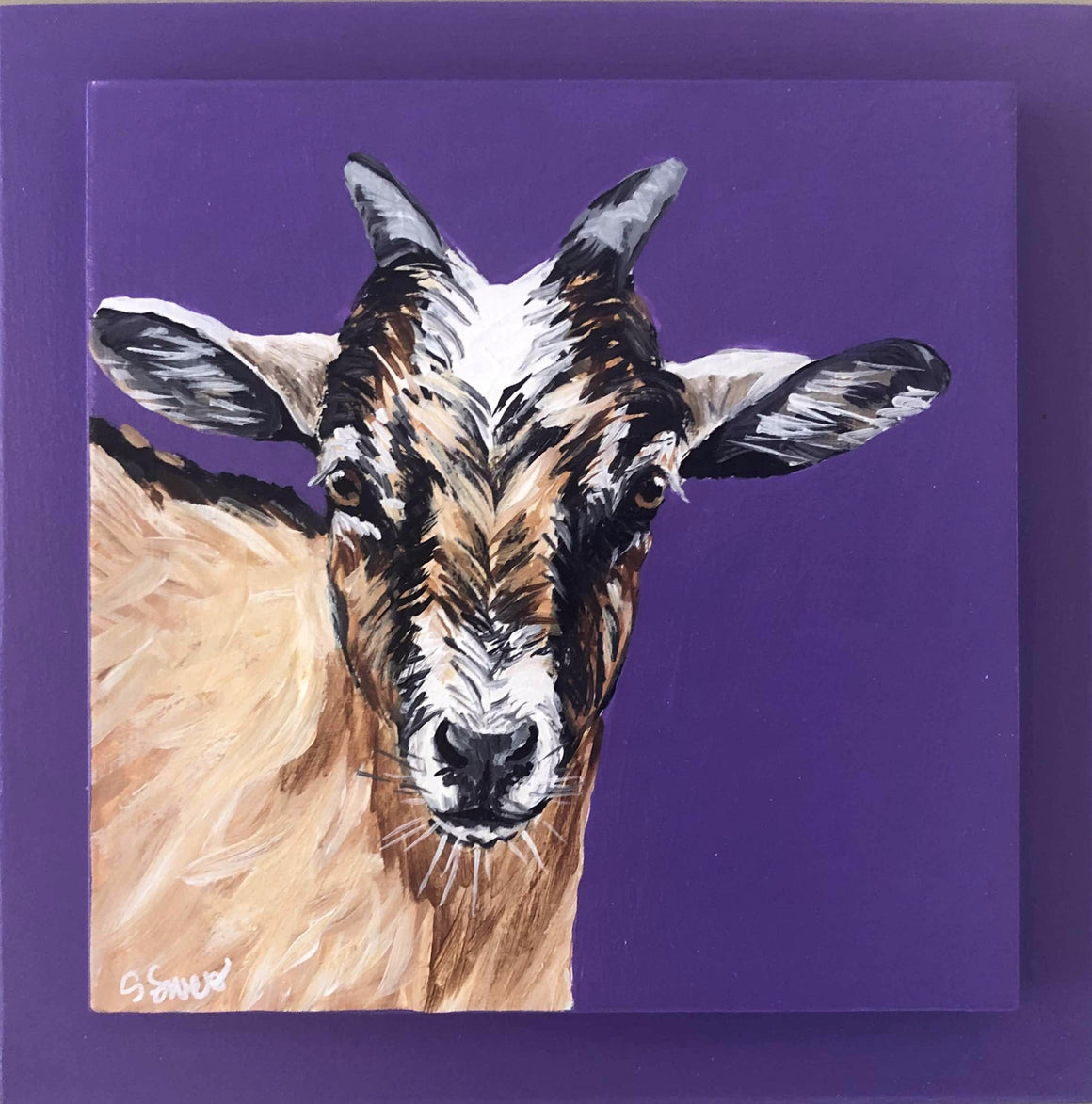 Goat on purple