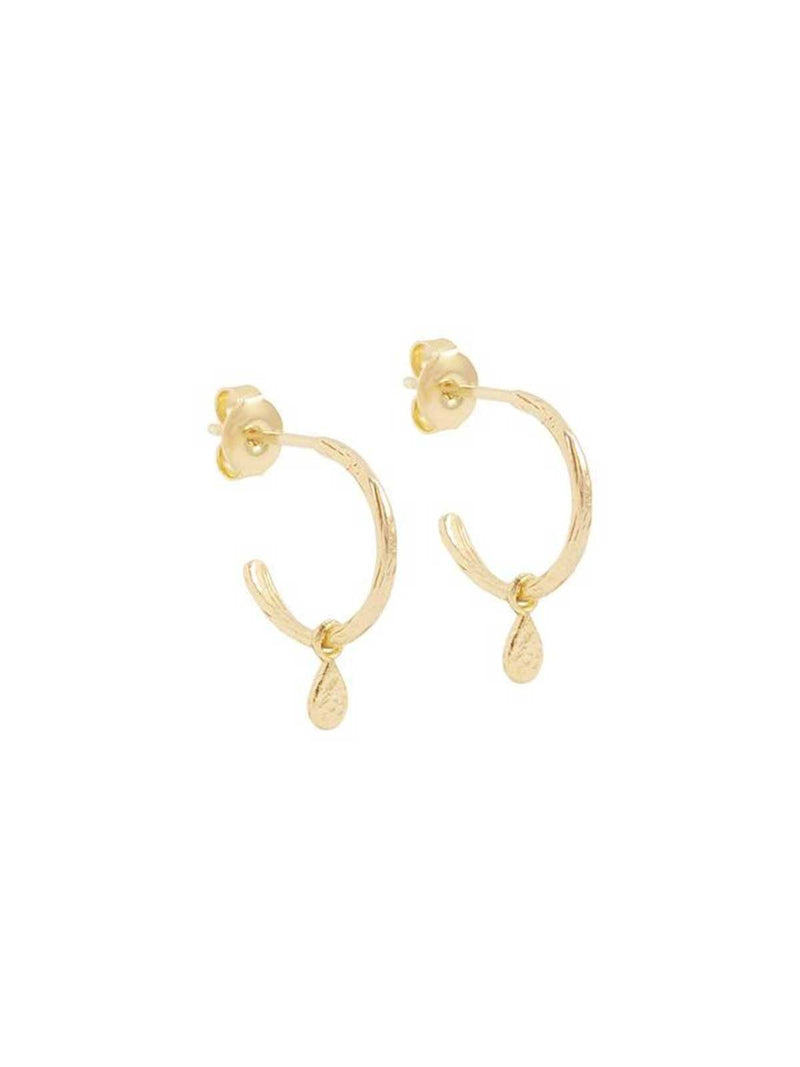 By Charlotte I Gold Grace Hoops I Perlu