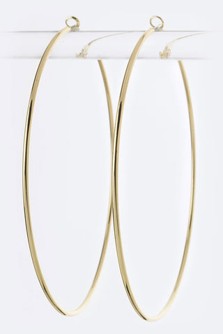 Classic Metal Hoop Earrings - Pole Beauties and Beasts