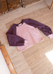 Duet Raglan Sweater in Plum & Floss