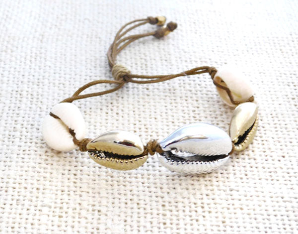 Cowry Shell Tricolor Cowry
