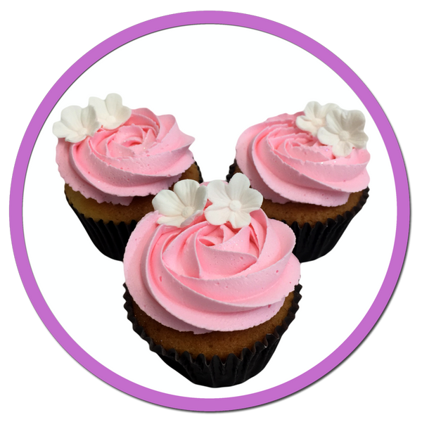 Strawberry Fields Gabby S Cupcakes