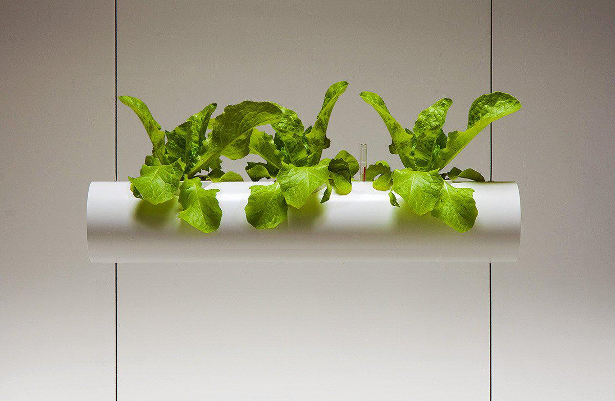 Vertical Hanging Garden-Urbanature-Urban Gardener