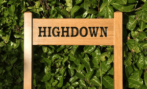 Highdown Inter-Medium Ladder Sign