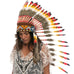 Long native american style headdress with multicolor duck feathers