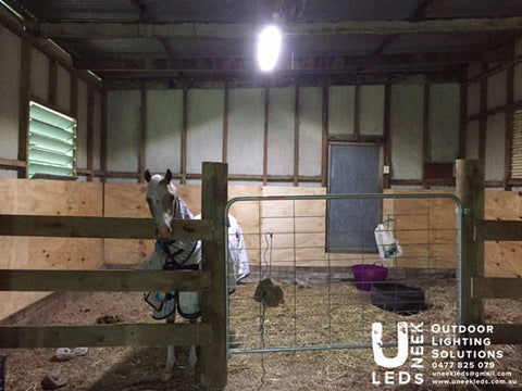 1 Horse Stable/ Tack Room / Shed Solar Setup