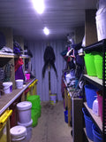 20Ft Shipping Container / Shed LED Setup