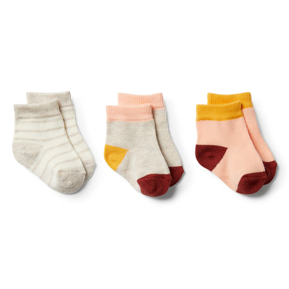 Peachy, Chilli, Golden Apricot-3 Pack Baby Socks by Wilson & Frenchy