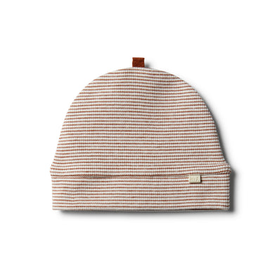 Organic Toasted Pecan Beanie by Wilson & Frenchy