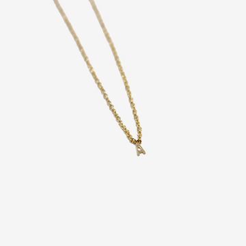 Gem Token Itty Bitty Initial Necklace