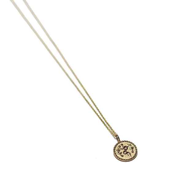 Vale 14k Health Amulet Necklace