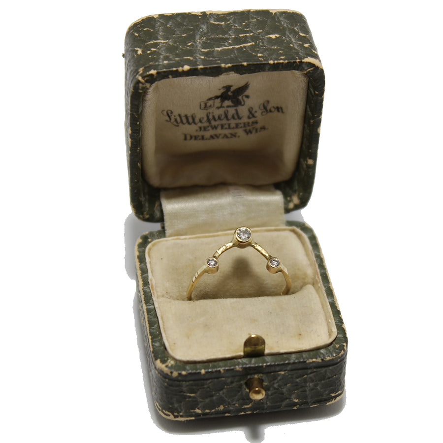 Young in the Mountains 14k Diamond Rowen Ring