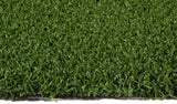 Monofilament Sports Turf (No Pad) 36oz - 12',15' Wide - Model ST36PVBM-U - Syntheticturf.com