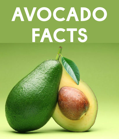 Avocado Facts