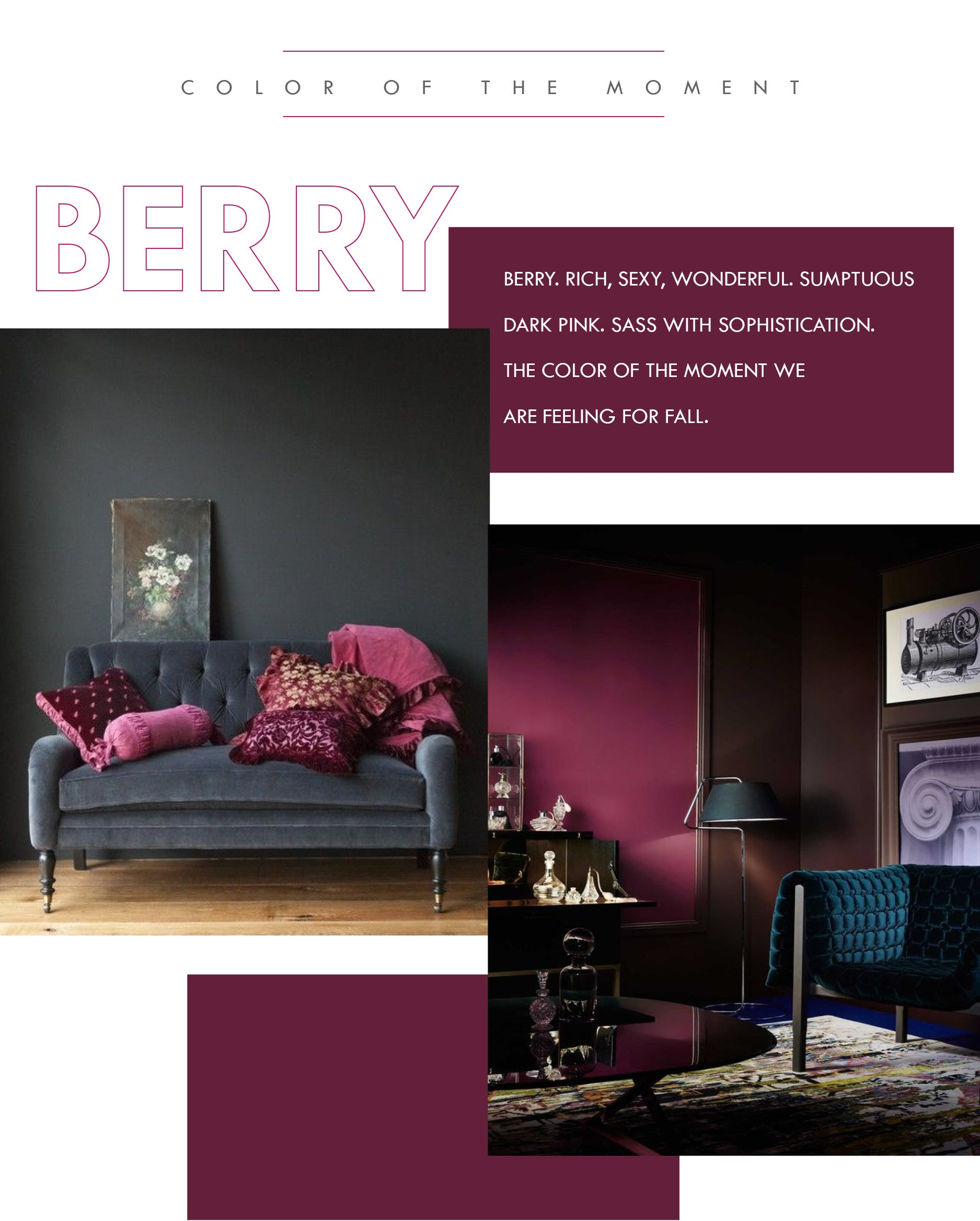 Berry Colored Interior Design ideas