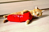"Cat playing with long red Plush Roll Toy embroidered ""I Love My Cat"""