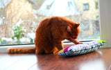 Cat playing with patchwork valerian & catnip cat pillow