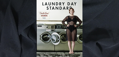 EVERYDAY STANDARD : THE LAUNDRY DAY STANDARD