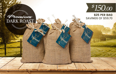 6x Organic, Single Origin Dark Roast Coffee 12 oz Bag - Bundle