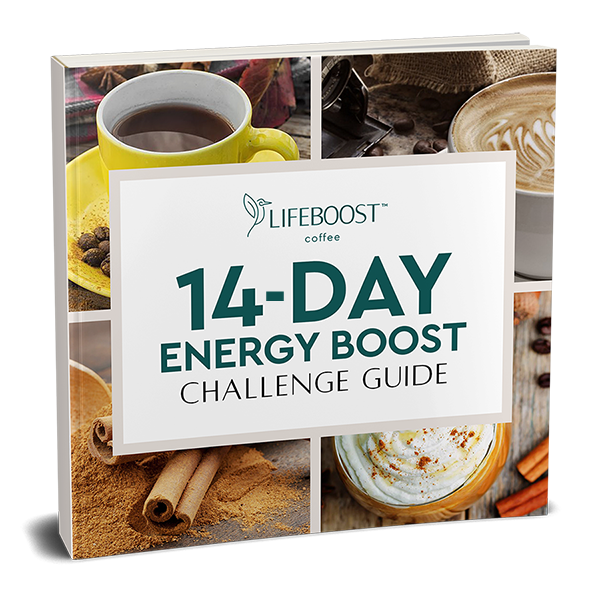 14 Day Energy Challenge Ebook
