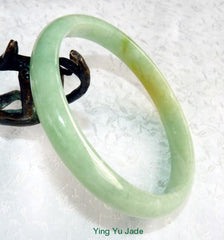 "Large/Men's ""Kiss of Yellow"" Burmese Jadeite Jade Bangle Bracelet 72mm (BB2860)"