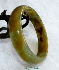 """Powerful Woman"" Colorful Yang Energy Chinese ""River Jade"" Bangle Bracelet 59mm (NJ2523)"