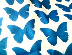 Butterfly Ribbon Designs