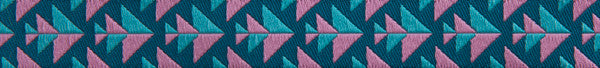 "Pink & Teal Positive Direction 5/8"" by Amy Butler"