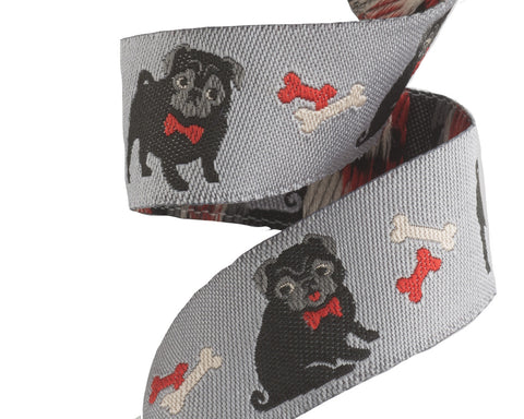 Adorable Pug ribbon on grey