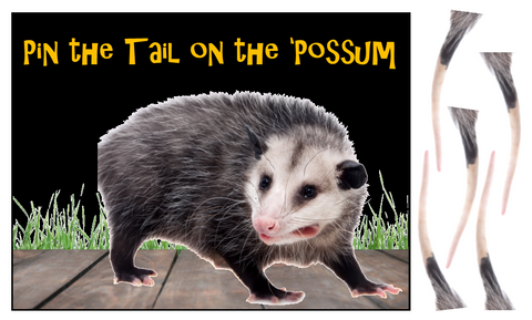 Pin the Tail on the Possum Game