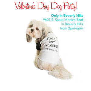 Special Valentine's Day Dog Party 2pm-6pm