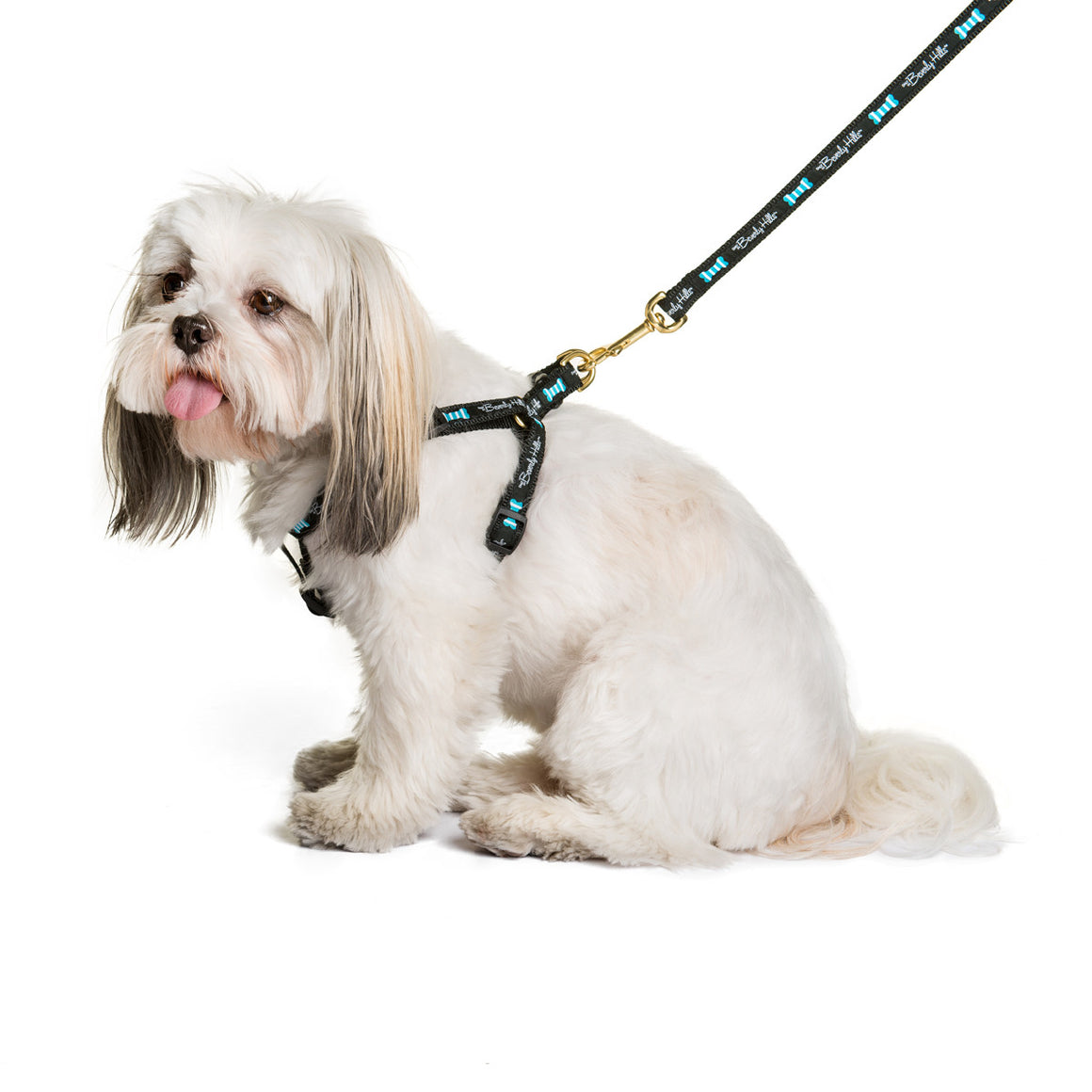 Posh Pooch 90210 Dog Harness Beverly Hills