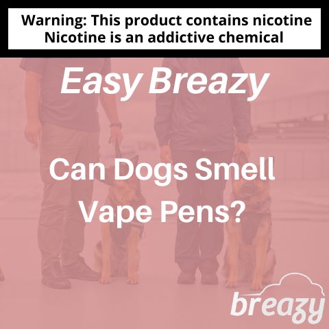 Can Dogs Smell Vape Pens