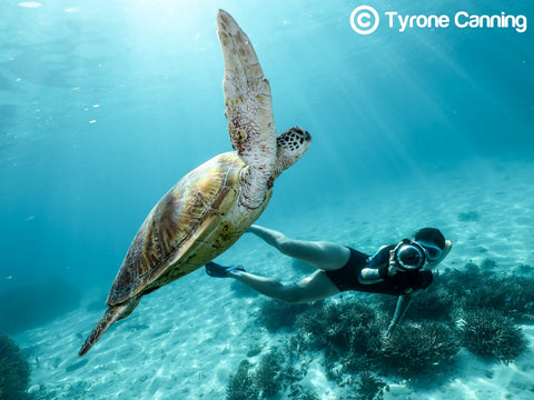Great Barrier Reef Photographer Joeva Dachelet Sells Underwater Prints at Resorts, Boutiques, and Online 4
