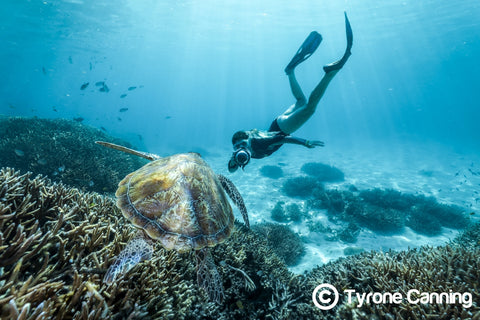 Great Barrier Reef Photographer Joeva Dachelet Sells Underwater Prints at Resorts, Boutiques, and Online 6