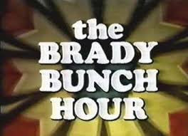 THE BRADY BUNCH HOUR (ABC 1976/77) - THE COMPLETE SERIES – VERY RARE!!!