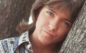 FOREVER HITS FROM DAVID CASSIDY - RARE!!!