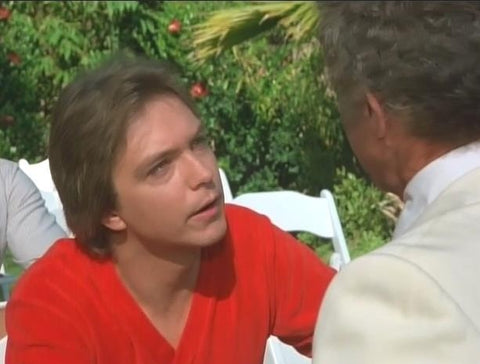 DAVID CASSIDY - VOL 1: FANTASY ISLAND/THE LOVE BOAT (ABC 1980)